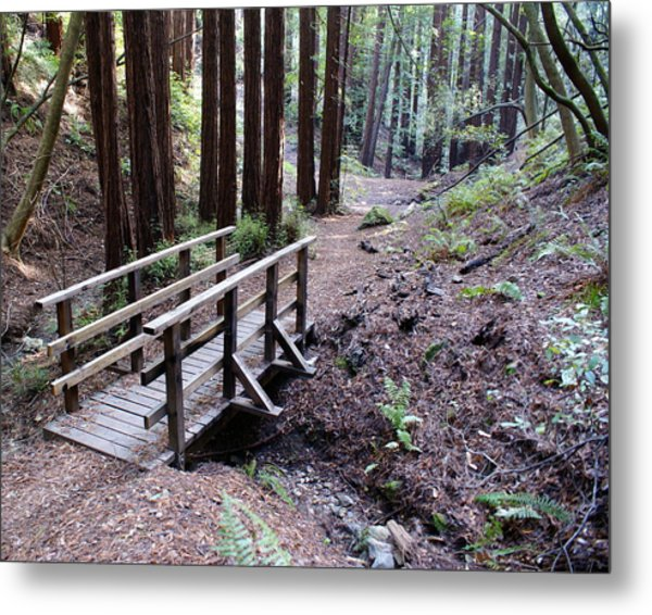 Bridge In The Redwoods Metal Print