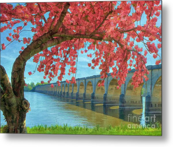 Beautiful Blossoms Metal Print