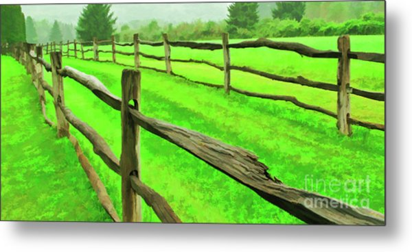 Bridle Trail Metal Print