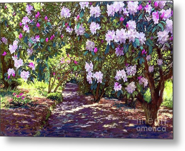 Bright And Beautiful Blossoms Of Spring Metal Print