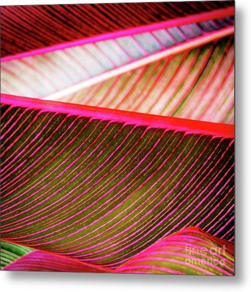 Bright Leaves 548 Metal Print