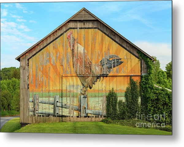 Bright Rooster Barn Metal Print