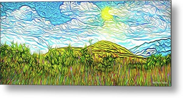 Bright Sky Summer - Field In Boulder County Colorado Metal Print