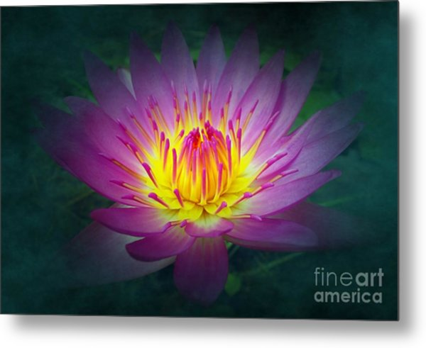 Brightly Glowing Lotus Flower Metal Print