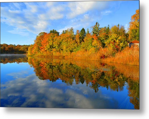 Brilliance Of Autumn Metal Print