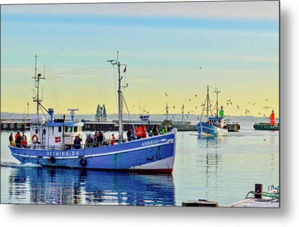 Bringing In The Day's Catch Metal Print