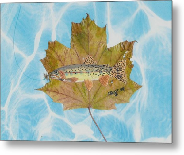 Brook Trout On Fly Metal Print