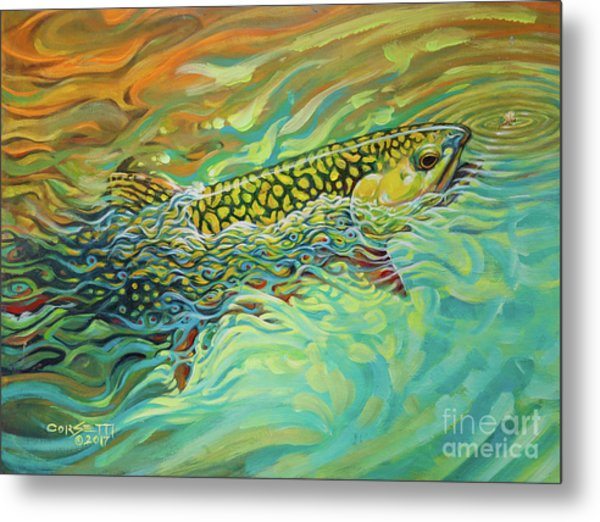 Brookie Flash Rework Metal Print