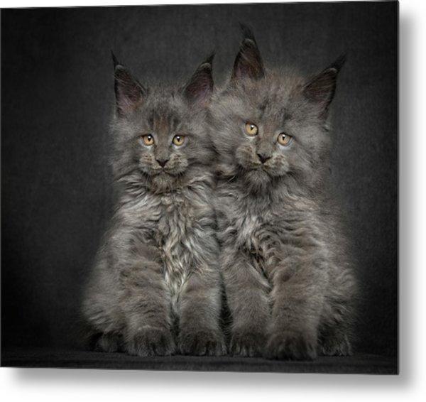 Brother And Sister  Metal Print