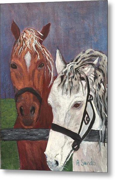 Brown And White Horses Metal Print