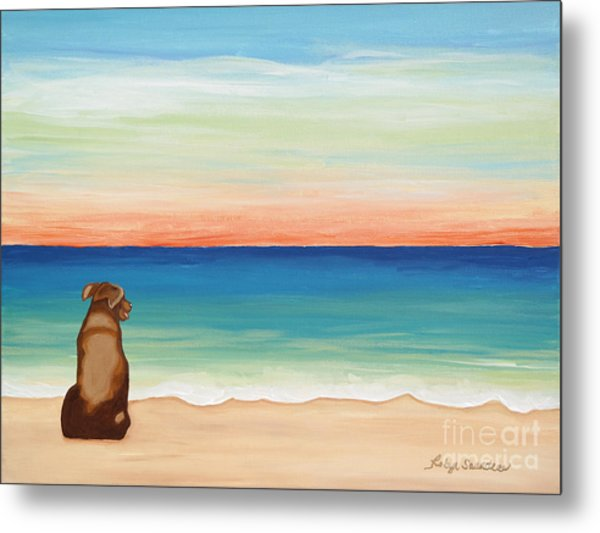 Brown Lab Dog On The Beach Metal Print