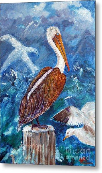 Brown Pelican With Gulls Metal Print