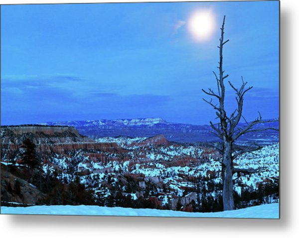 Metal Print featuring the photograph Bryce Blue by Nicholas Blackwell