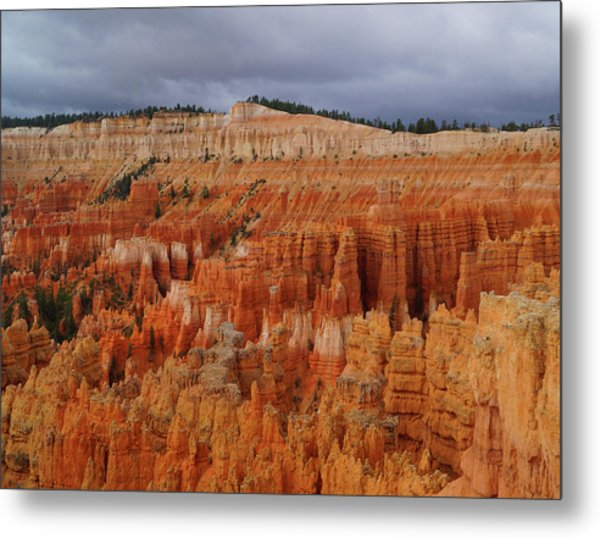 Metal Print featuring the photograph Bryce Canyon National Park by Broderick Delaney