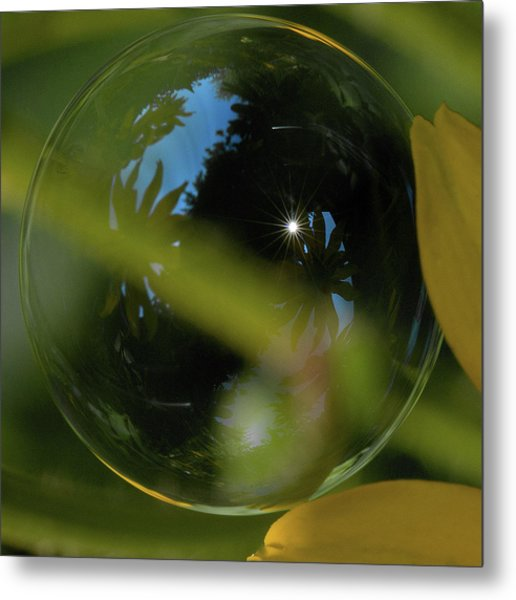 Bubble In The Garden Metal Print