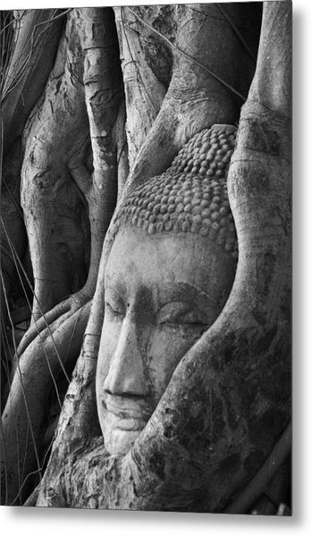 Buddha Head Metal Print by Jessica Rose