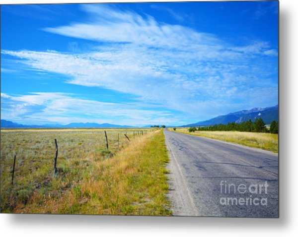 Metal Print featuring the photograph Buena Vista by Kate Avery