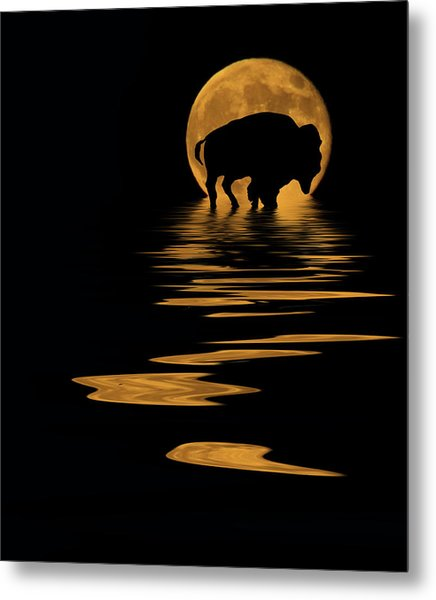 Buffalo In The Moonlight Metal Print