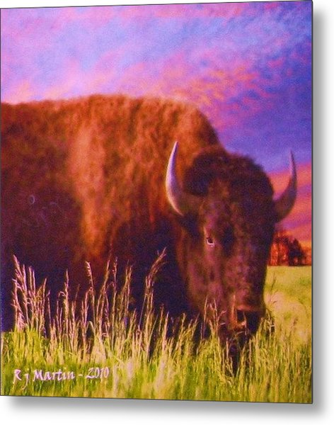 Buffalo Sunset Metal Print