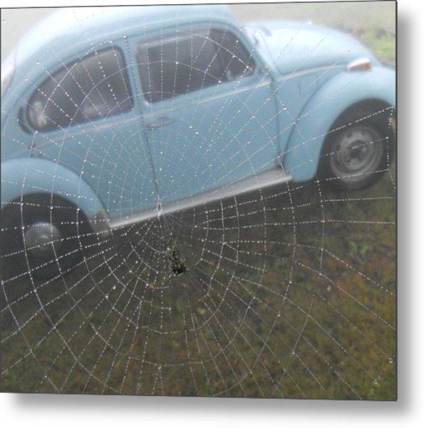 Bug In A Web Metal Print