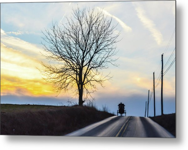 Buggy On The Crest Metal Print