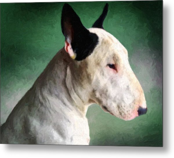 Bull Terrier On Green Metal Print