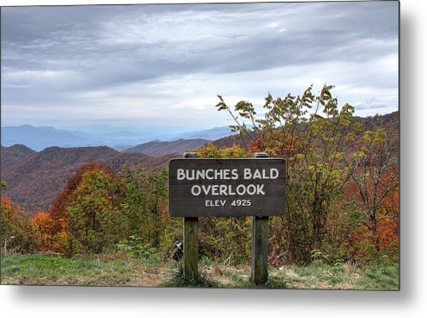 Bunches Bald Metal Print