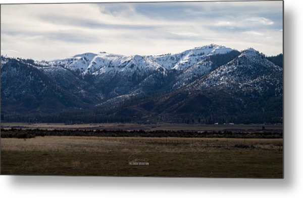 Buntingville Afternoon Metal Print