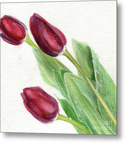 Burgundy Tulips Metal Print