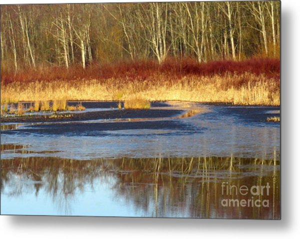 Burnaby Lake Metal Print