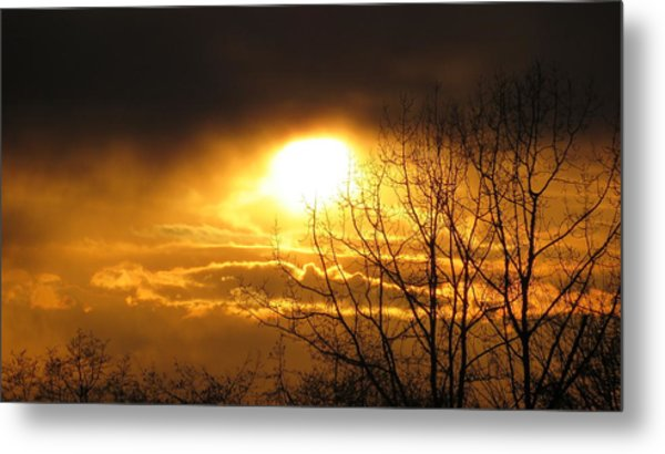 Burnaby Mountain Metal Print