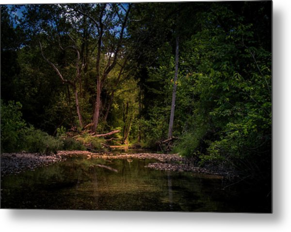 Busiek State Forest Metal Print