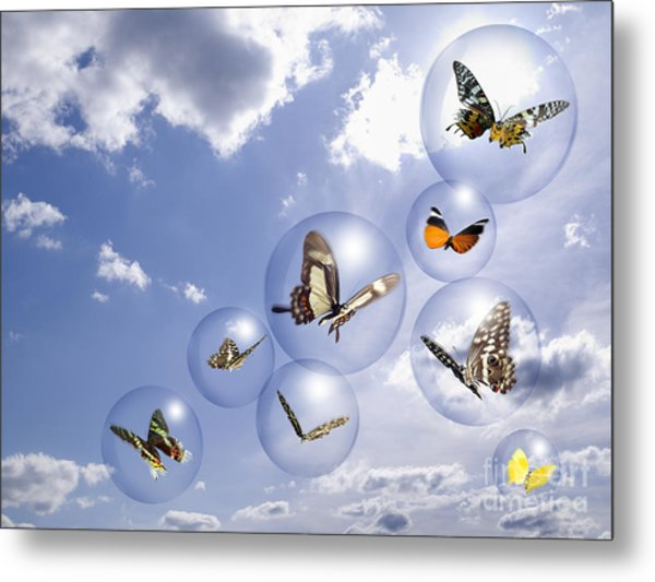 Butterflies And Bubbles Metal Print
