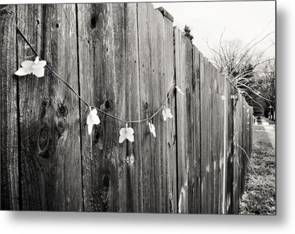Butterflies On A Rustic Fence Metal Print