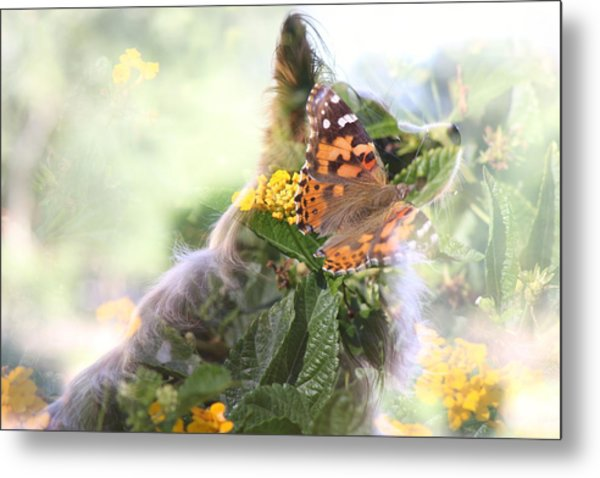 Butterfly Dog Metal Print