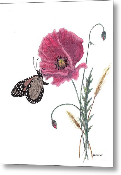 Butterfly Dreaming Metal Print