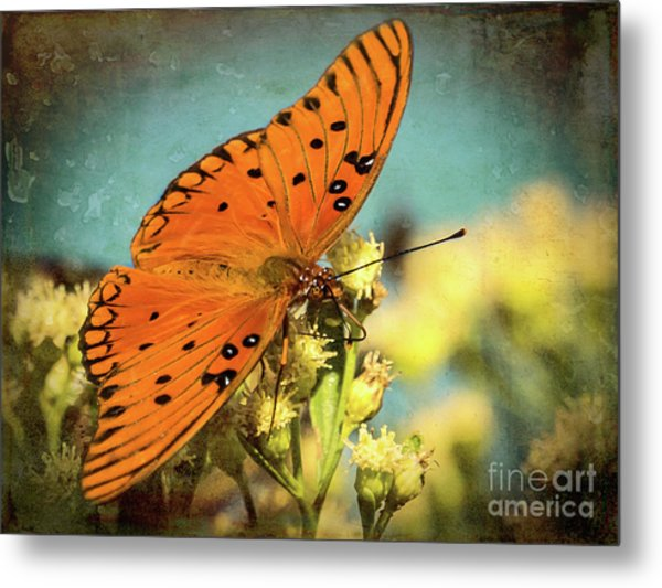 Butterfly Enjoying The Nectar Metal Print