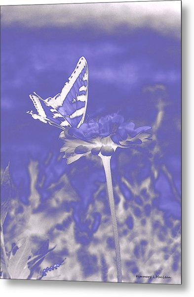 Butterfly In The Mist Metal Print
