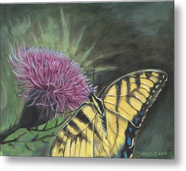 Butterfly On Thistle 2010 Metal Print by Cheryl Johnson