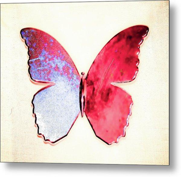 Butterfly Metal Print by Paul Jarrett