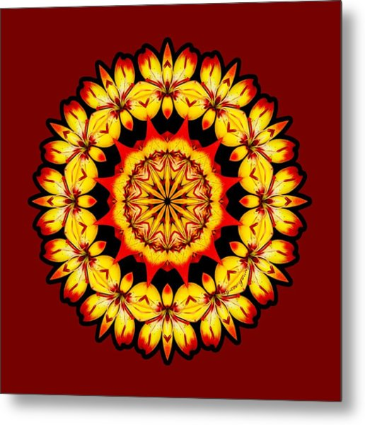 Metal Print featuring the digital art Butterfly Sun by Lynde Young