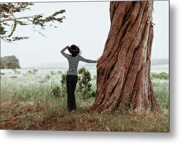 By The Cypress Metal Print