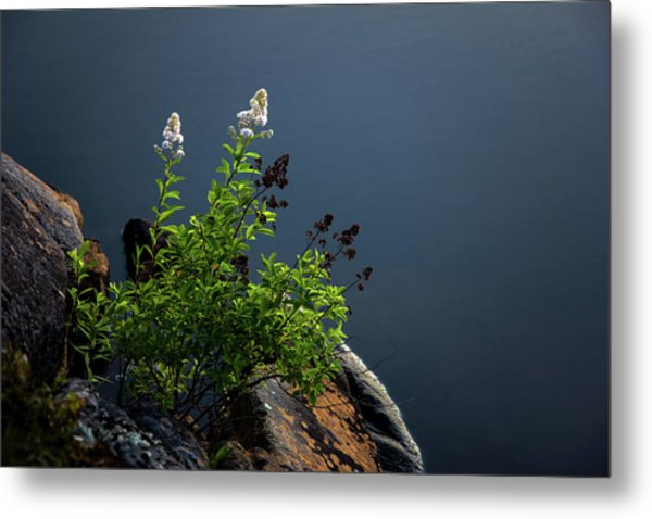 By The Edge Metal Print