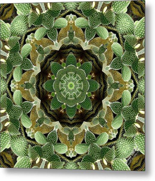 Cactus 1361k8 Metal Print