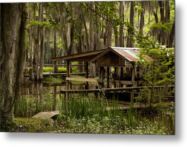 Caddo Lake Reflection Metal Print