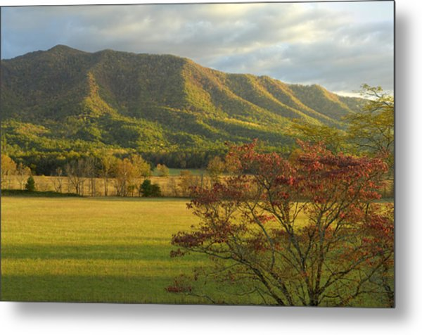 Cades Cove Autumn Sunset In Great Smoky Mountains Metal Print by Darrell Young