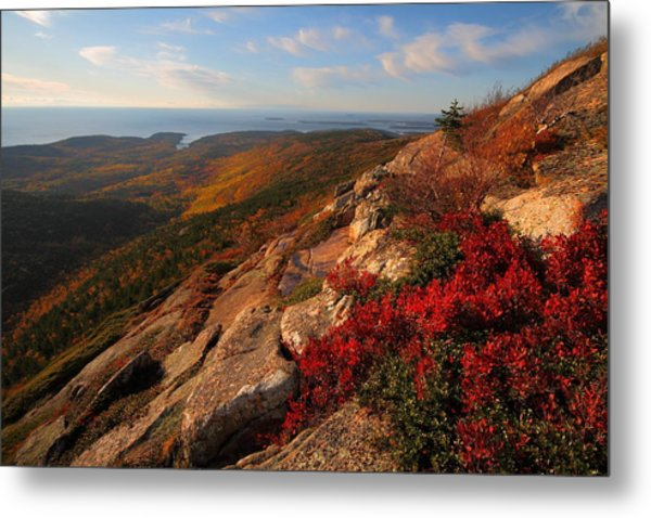 Cadillac Mountain Sunrise At Acadia National Park Metal Print