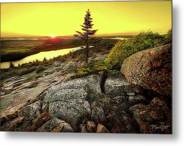 Metal Print featuring the photograph Cadillac Mountain Sunset by David A Lane