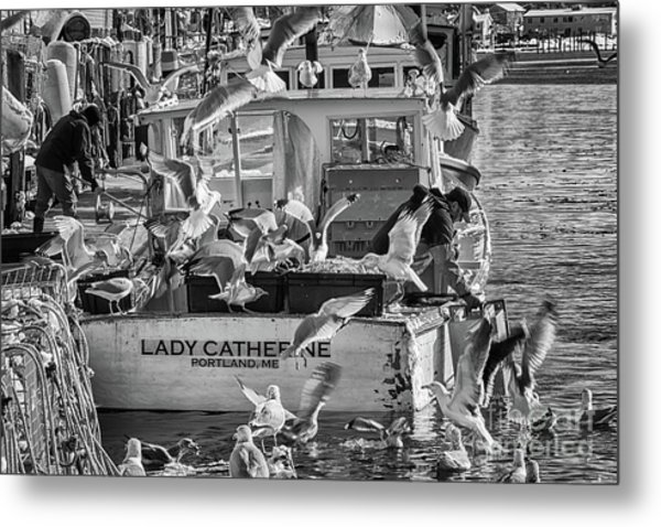 Cafe Lady Catherine Black And White Metal Print
