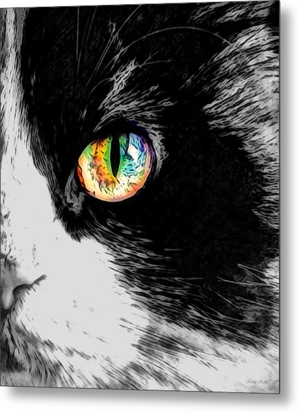 Calico Cat With A Splash Metal Print